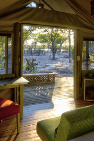 Hyena Pan Tented Camp / Botswana